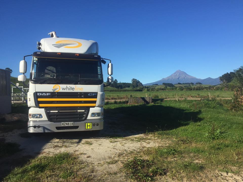 whiteline transport stock feed delivery truck in taranaki